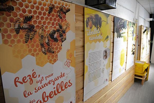 Visuel d'exposition avec dessin de ruches et abeilles